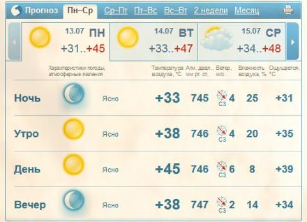Летняя жара, прогноз погоды