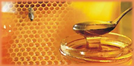 Пчелиный мёд на сотах и в банке маслом